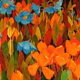 Blue Poppies, Orange Tulips