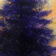 Dark Spruce