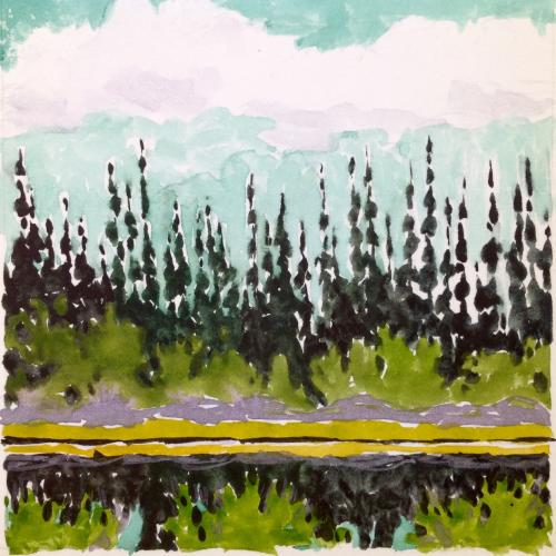Black Spruce, University of Fairbanks