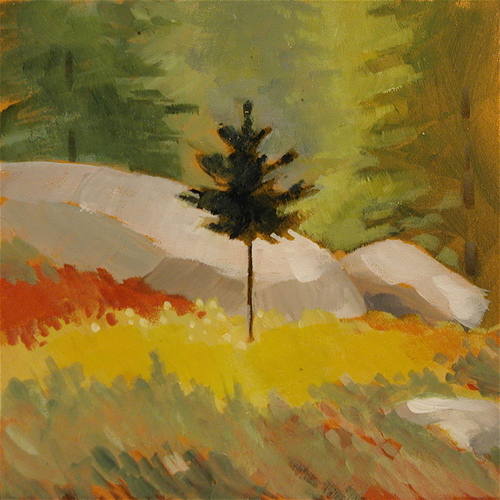 Spruce Solitaire